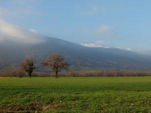 Marche nordique mardi @ Salle de la Chenaille | Échenevex | Auvergne-Rhône-Alpes | France